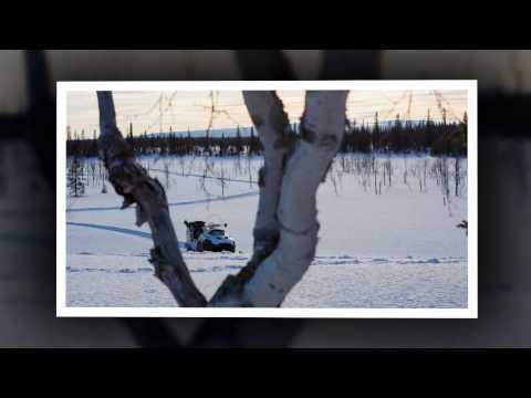 Risposte di stagno su fishings Kharkiv