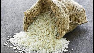 Planet Wissen - Der Reis