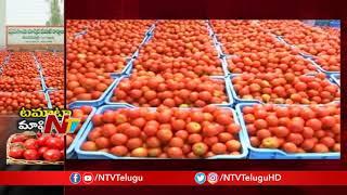 Tomato Price Falls Down to 5 rs Per kg in Madanapalle Market Yard | NTV