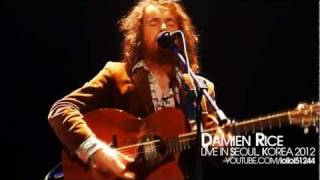 Damien Rice - Amie  (LIVE in Seoul, Korea 2012)