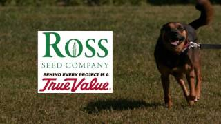 Ross Seed and Propac Dog and Cat Food