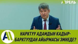 Лекцион: Октябрь Капалбаев кыргыздын чечендик өнөрү тууралуу \\ Апрель ТВ