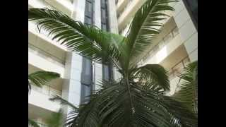 preview picture of video 'israel Herzliya rent  apart hotel OKEANOS BA MARINA  : Vacation rental'