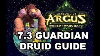 7.3.5 Druid Guide - The Aggressive Guardian