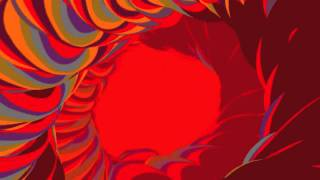 Animal Collective - Lion In A Coma