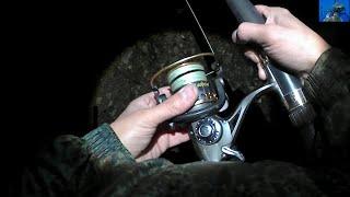 Какую катушку выбрать для ловли сома с берега