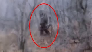 5 Scary Bigfoot Videos That No One Could Explain