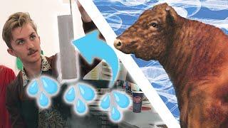 We Made A Mistake: Bull Sperm