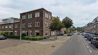 Utrecht: Kat overleden na mishandeling met vuurwerk