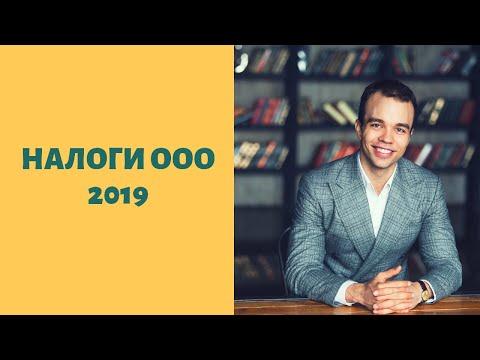 Налоги ООО в 2019