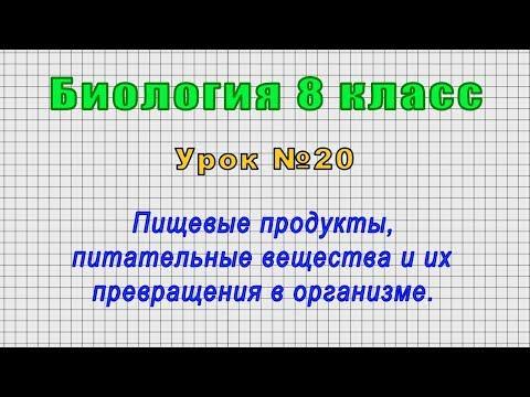Биология 8 класс (Урок№20 - Пищевые продукты, питательные вещества и их превращения в организме.)