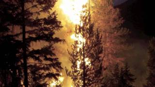 Flagstaff Hotshots 2011