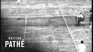 Davis Cup (1954)