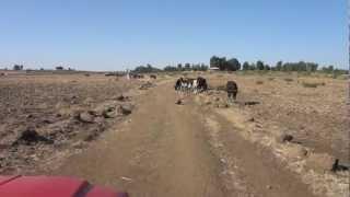 Driving to Lake Tana, Gorgora, Ethiopia - Part 2