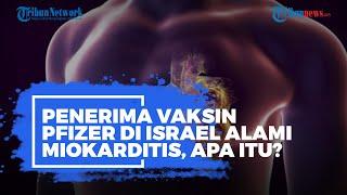 Beberapa Penerima Vaksin Pfizer di Israel Alami Miokarditis, Apa Itu?