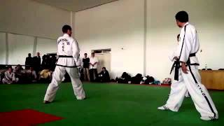 Do-San. Taekwon-do ITF. Seminar 2012.