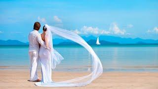 Это любовь две тропинки свела Белые крылья