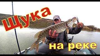 Crazy fish arion asr762s m