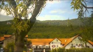 preview picture of video 'Weingut - Weinhotel von Fleischbein & Kienle in Burrweiler  Pfalz'