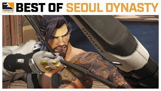 Tiger Bares Its FANGS — Best of Seoul Dynasty | Best of the Week #17