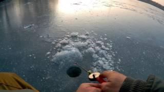 Удочки на окуня для зимней рыбалки