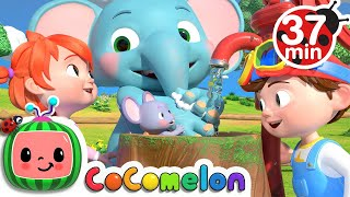 Wash Your Hands Song   More Nursery Rhymes & Kids Songs - CoComelon