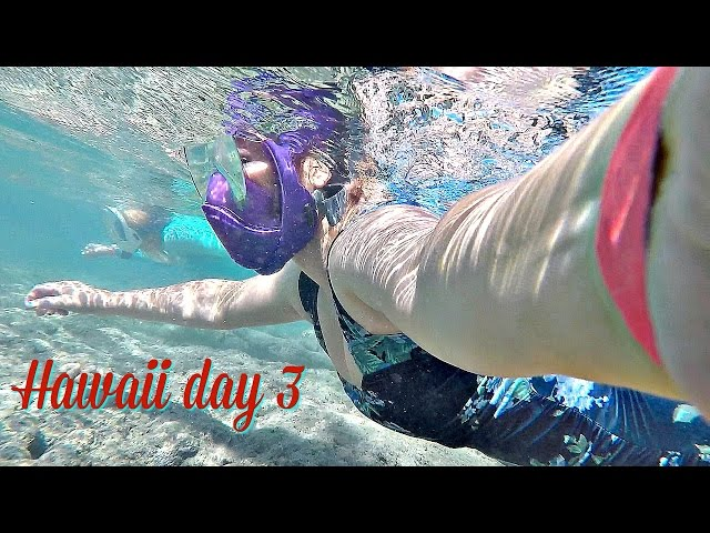 Snorkeling at HANAUMA BAY / Hawaii Day 3