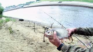 Где в тюмени рыба клюет