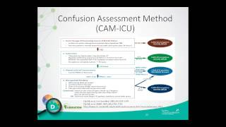 An Integrated Approach to ICU Delirium Assessment, Prevention and Management