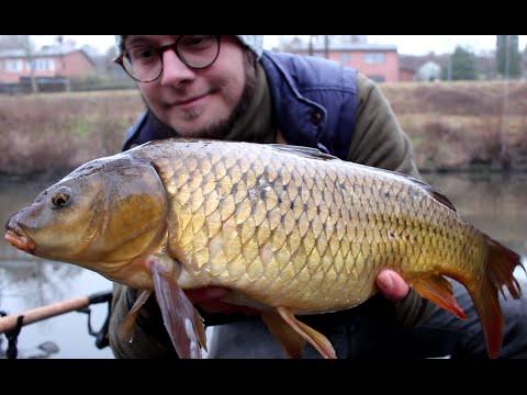 Vinterfiskeri efter karper