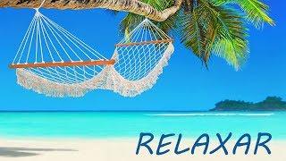 Live Música Relaxante e Natureza 🔴  Paisagens Relaxar e Acalmar