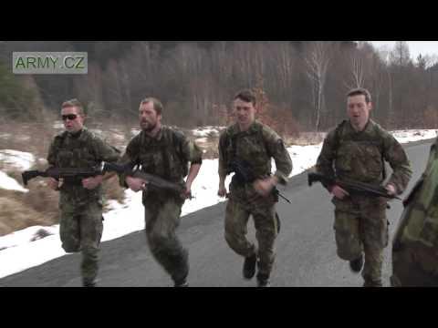 Fiziotenz analogy Ceny Ukrajině