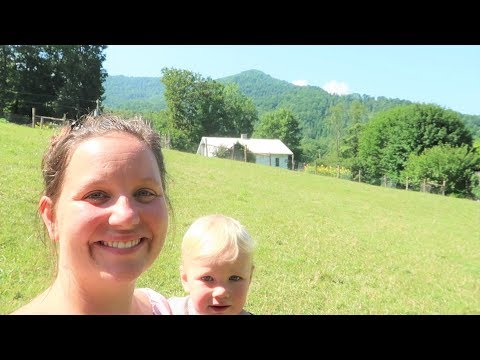 Moving Livestock and Harvesting Blueberries With Kids!