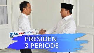 Survei Tunjukan PDI-P & Golkar Setuju Presiden 3 Periode, Jokpro: Partai Lain Tinggal Tunggu Waktu