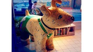 Brighton Snowdogs feat. Crush-Puppy & Dudley Dockerill (1min)