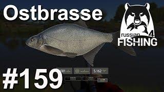 Ostbrassen und Marmorkarpfen am Fluss Achtuba 🎣 🐋 | Russian Fishing 4 #159 | Deutsch | UwF