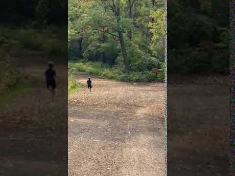 Video Of Wyalusing State Park, WI