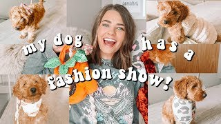 My Dog Has A Fashion Show!! Puppy Try On Haul