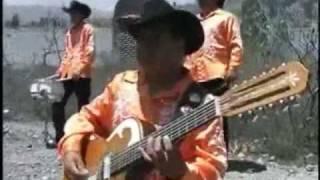 """Grupo Norteño Los PEREGRINOS de Oaxaca, """"Pienso en Ti"""","""