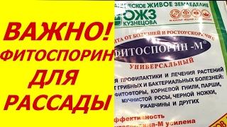 ФИТОСПОРИН - ОБЯЗАТЕЛЕН ДЛЯ РАССАДЫ   НЕ РИСКУЙТЕ !