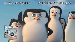 Tučňáci z Madagaskaru - 4 minuty z filmu - na DVD a Blu ray