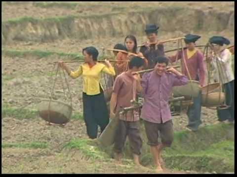 Bộ đội về làng