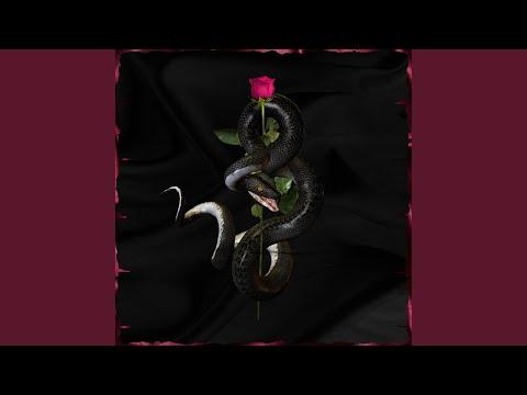 Tytokush Snake On My Way Feat Gospeel Nfx  Met Music