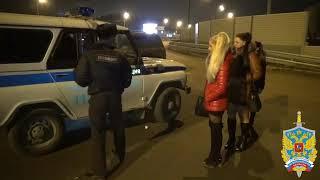 Подмосковными полицейскими пресечена деятельность по оказанию интимных услуг