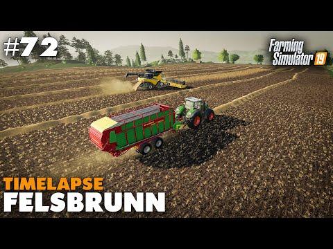 Felsbrunn Timelapse #72 Harvesting Wheat Farming Simulator 19