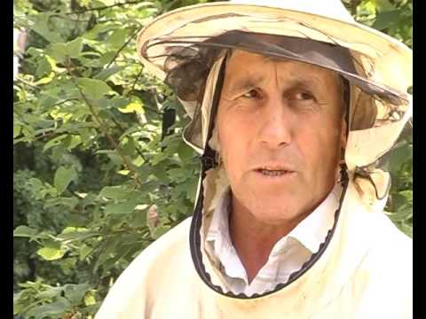 Пчеловод Афкат Халитов 2012г. БСТ