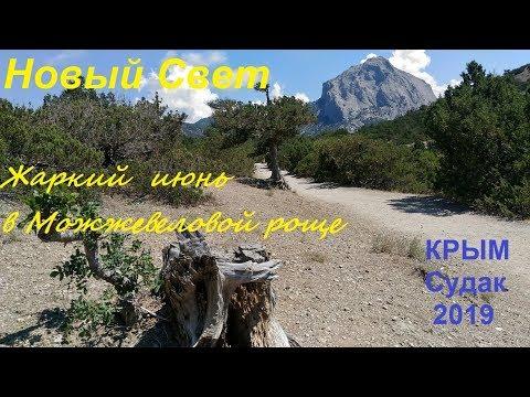 Крым, Можжевеловая роща, Новый Свет, Судак 2019, 27 июня. Жара, всё высохло, толпы туристов