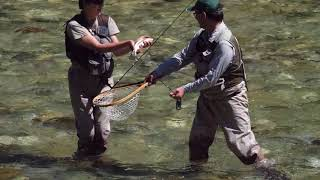 Fly Fishing Tributaries Slovenia