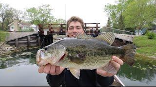 Spring Topwater Frog Fishing  -- Ft. Apbassin (...again)
