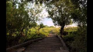 Michael Bystrov An Hour Before Dawn Piano Classical Relaxing